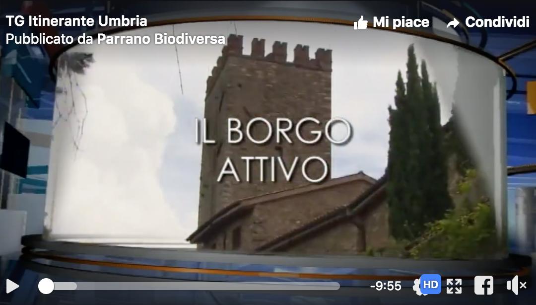 TG Itinerante Umbria fa tappa a Parrano